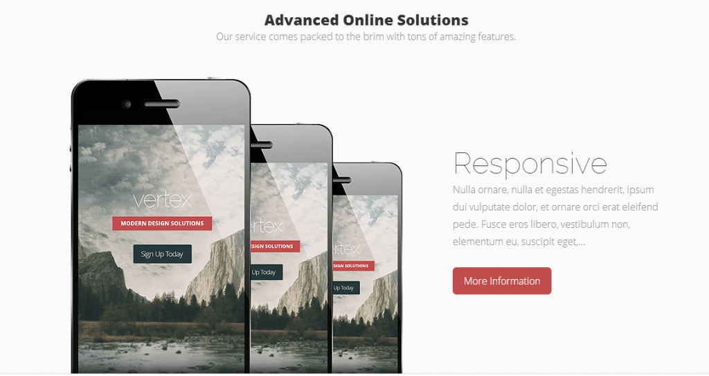 Elegant Themes' Vertex Theme is Responsive!