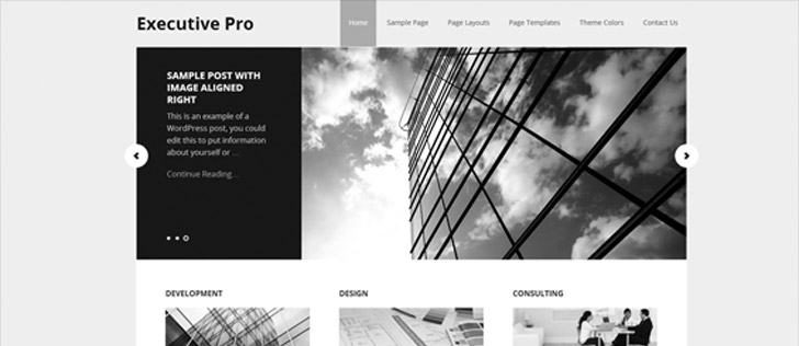 Executive Pro Theme